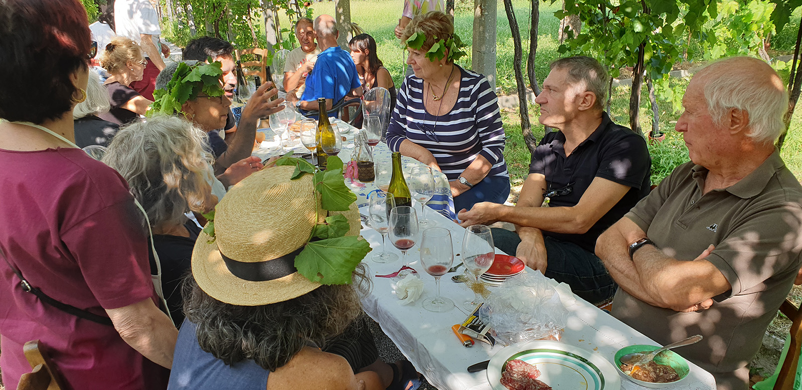 Walking and tasting tours in Emilia-Romagna - lunch in a vineyard